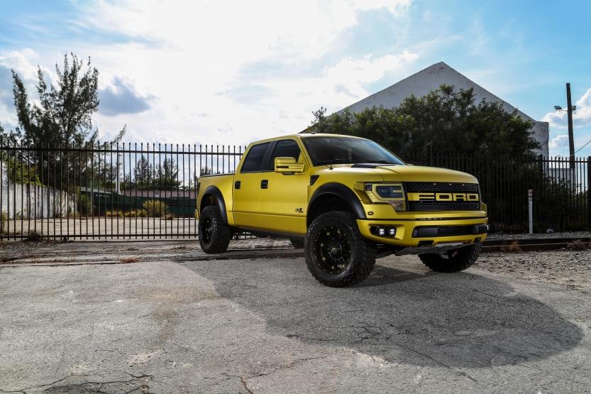 Gold Raptor 1
